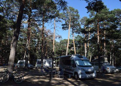 acampada-libre-camping-madrid