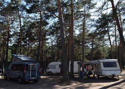 acampar-camping-bosque